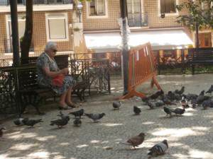 Placa-das-Flores---feeding-the-pigeons-in-the-park