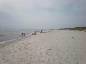 Sandhammaren-beach---Skanes-best-beach-2010