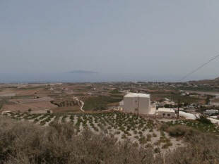 Vineyards_Santorini
